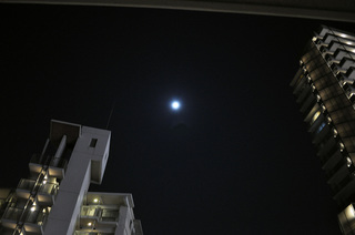 2014_moonlight.JPG